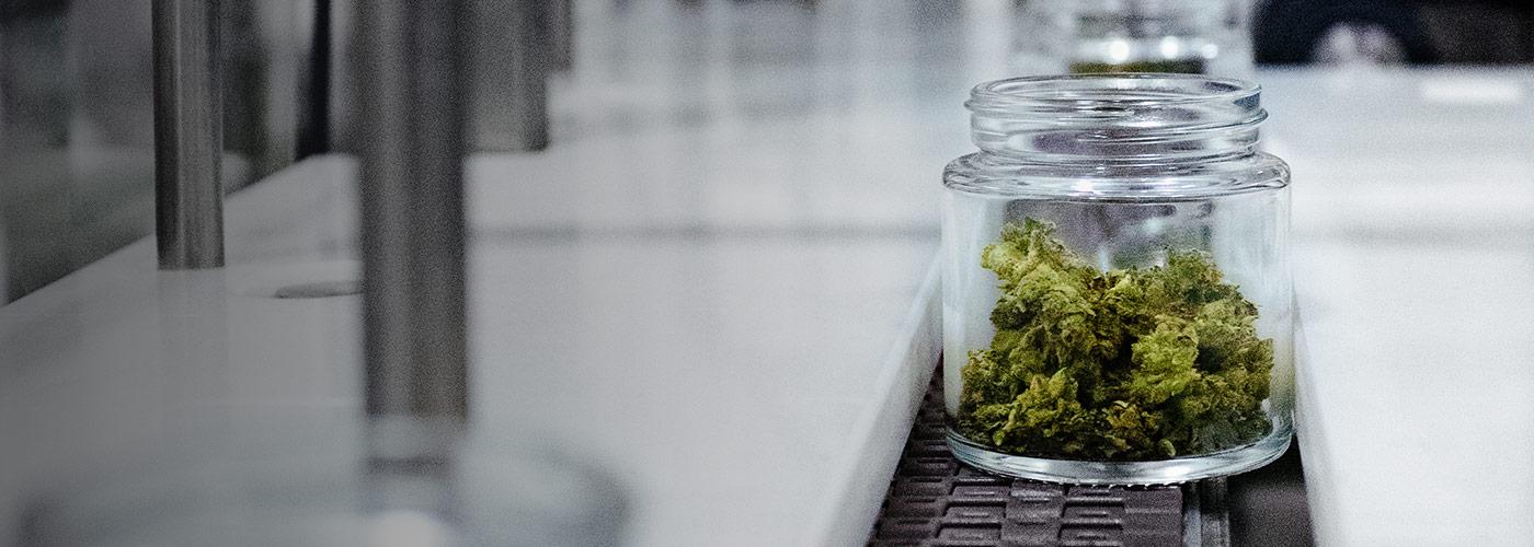 Packaging cannabis in jars