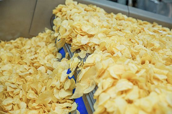 Industrial Potato Chips Frying Equipment