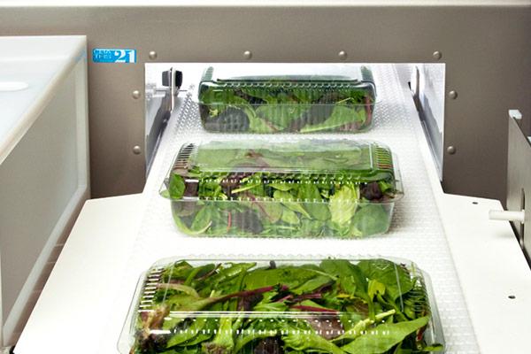 CEIA Metal Detectors for Food