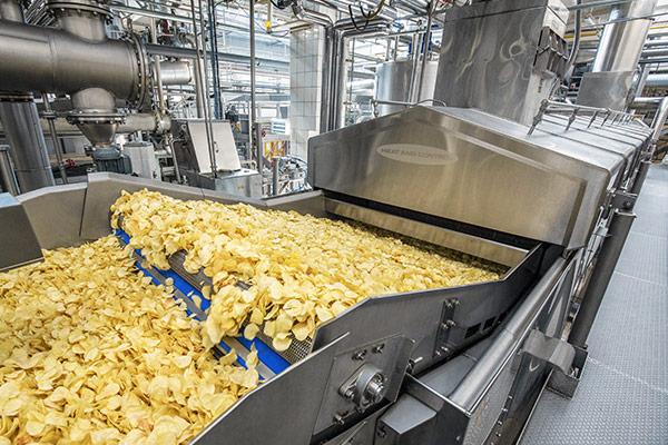 Potato chip frying system