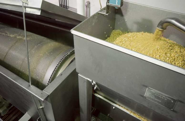 Wash corn before grinding and masa preparation