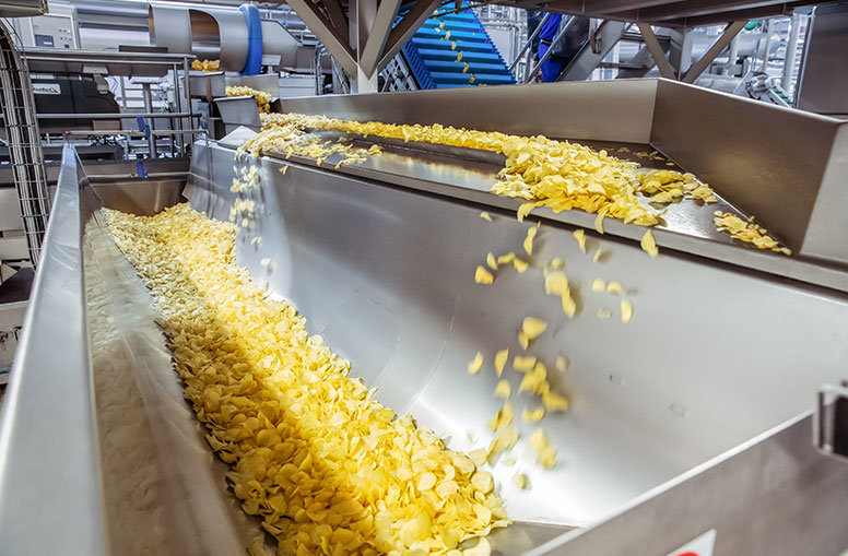 Potato chips on SwitchBack Accumulation Conveyor
