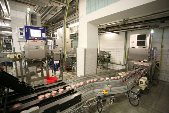 Stainless Steel Constructed X-ray System for Cheese