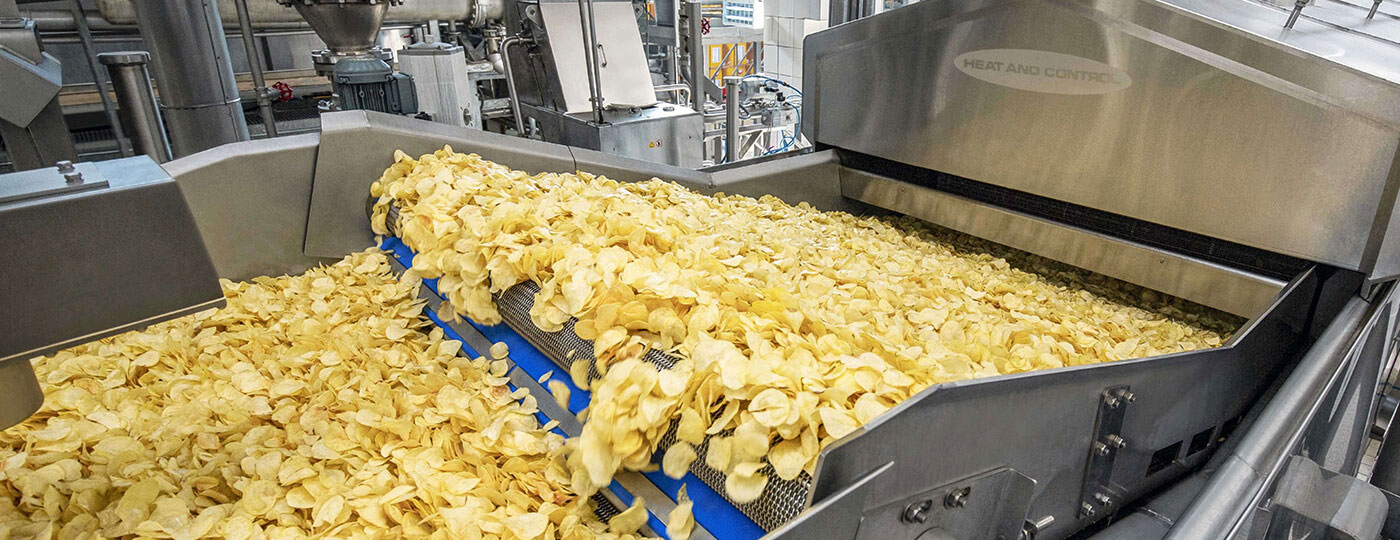 Heat and Control Potato Chips Fryer