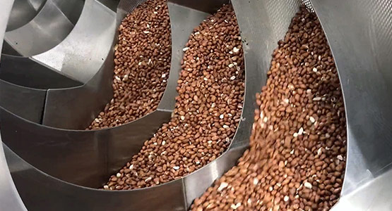 Equipment for continuous dry roasting of nuts