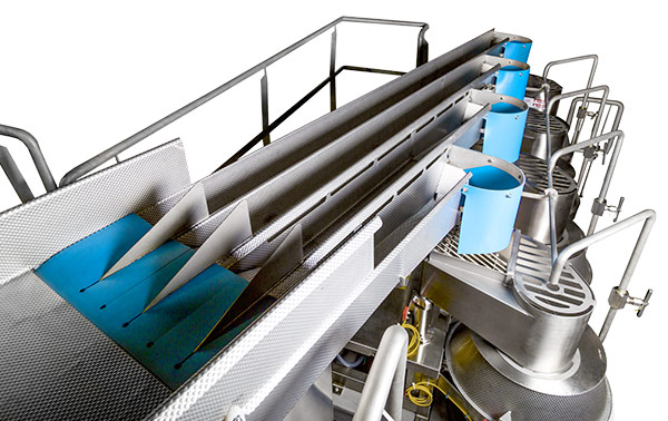 FastLane Slicer Infeed Conveyor