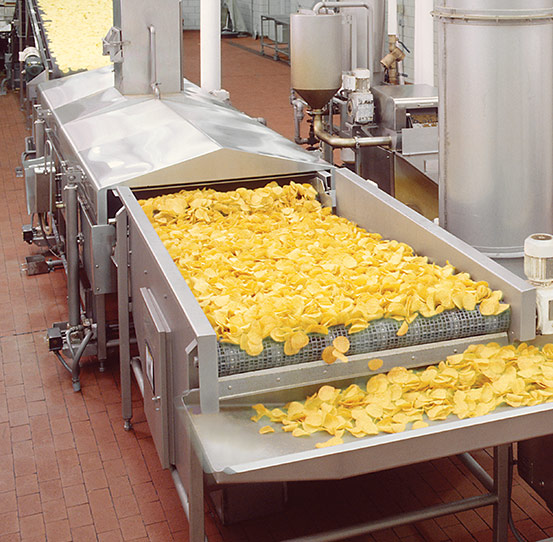 Continuous frying of tortilla chips with fryer support module