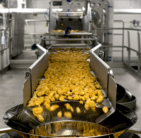 FastBack Horizontal Motion Conveyor conveying chicken nuggets