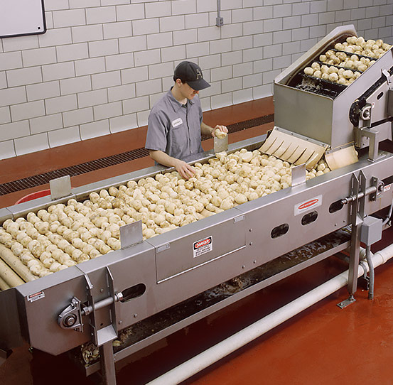 Inspection and trim conveyor for potatoes and vegetables