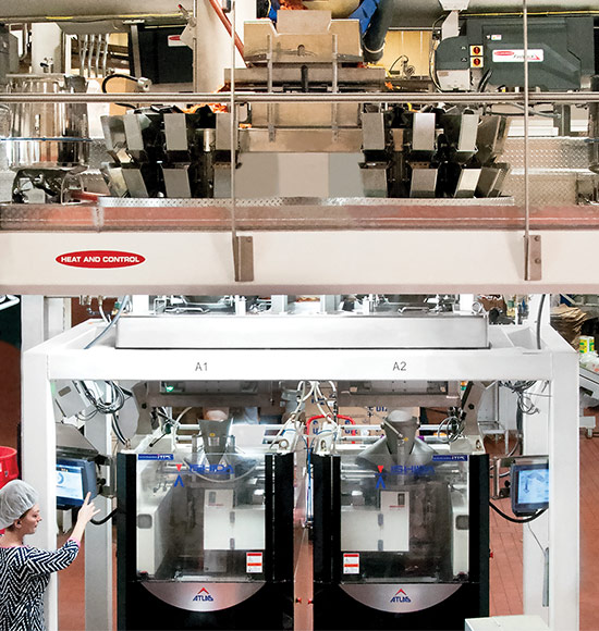Complete Snack Packaging Equipment Systems