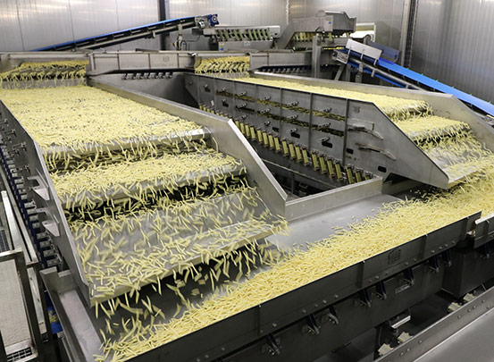 Key Technology vibratory conveyor for French fry