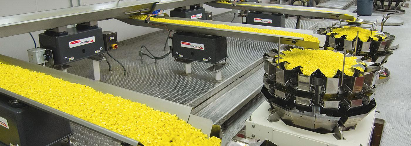 Equipment for manufacturing and distributing snack foods