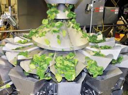 Salad Weigher with Rotary Sweeper