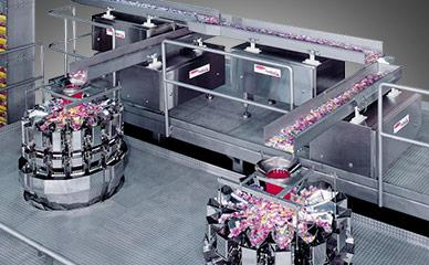 Support structures and platform for candy processing and packaging