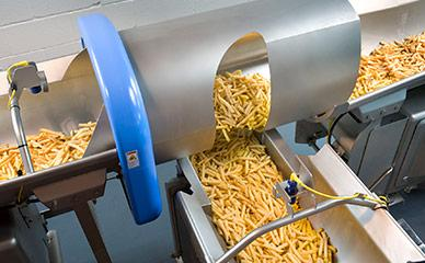 Conveying french fries in food processing line