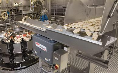 Conveying frozen poultry to weigher and packaging
