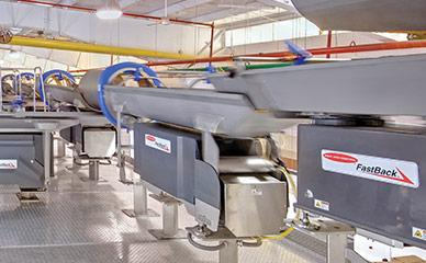 Horizontal motion conveyors for pasta lines