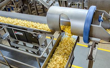 Conveying processed potato chips to seasoning and packaging equipment