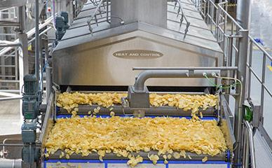 Industry leader in potato chip frying systems