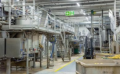 Support structures and platforms for potato chip processing lines