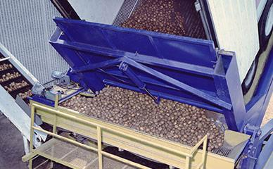 Unloading potatoes for potato chip production line
