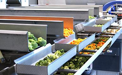 Blending systems for mixed vegetables, fruit and salad