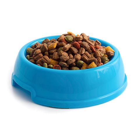 Pet Food Industry Equipment