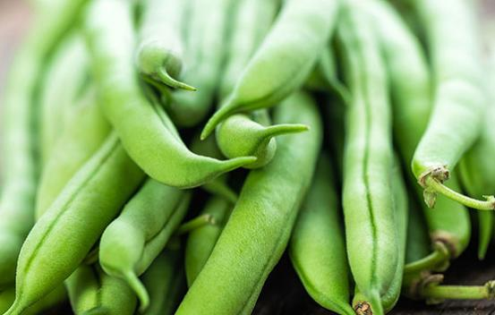 Florida Specialties Green Beans